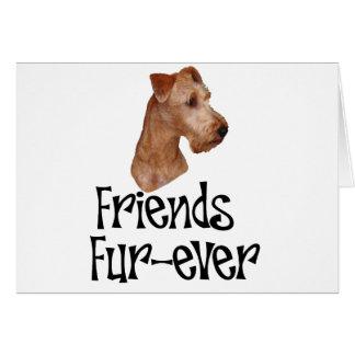 "Irish Terrier ""Friends Fur-ever"" Cards"