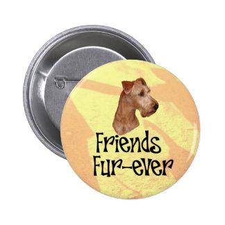 "Irish Terrier ""Friends Fur more ever "" Pinback Button"