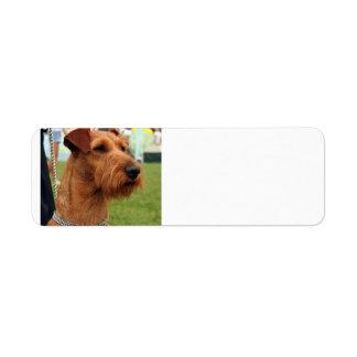 irish terrier.png return address label