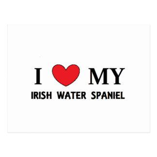 irish water spaniel love postcard