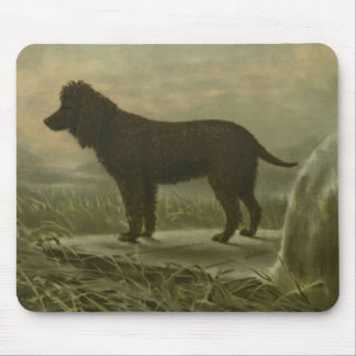 Irish Water Spaniel Mouse Mat