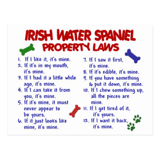 IRISH WATER SPANIEL Property Laws 2 Postcard