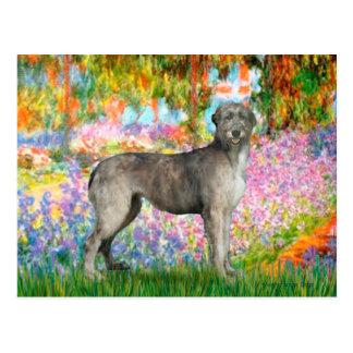 Irish Wolfhound 3 - Garden Postcard