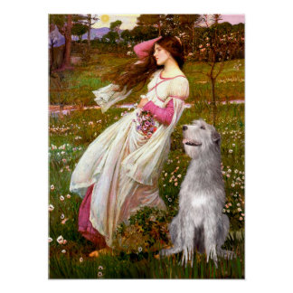 Irish Wolfhound 6 - Windflowers Poster