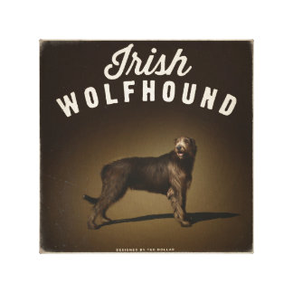 Irish Wolfhound Canvas Prints