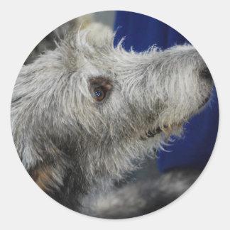 Irish Wolfhound Coaster Stickers