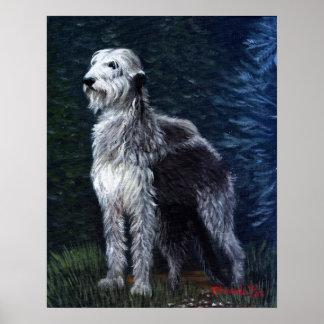 Irish Wolfhound Dog Portrait Poster