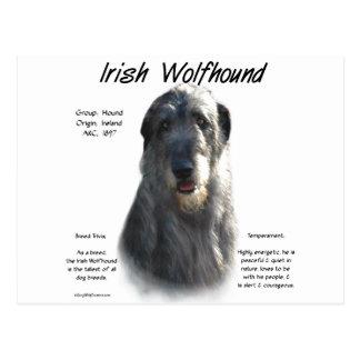 Irish Wolfhound grey History Design Post Card