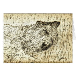 "Irish Wolfhound ""Let sleeping dogs lie"" Card"