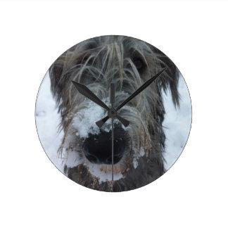 irish wolfhound playing in the snow round clock