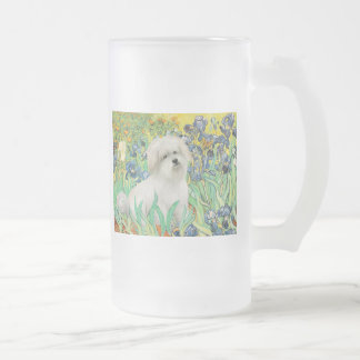 Irisis - Coton de Tulear 7 Frosted Glass Beer Mug