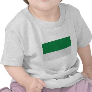irland green white tshirt