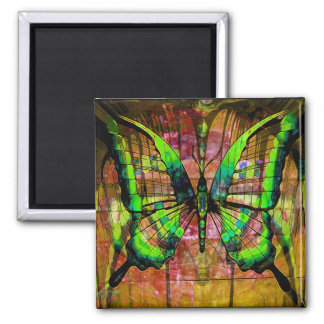 Iron Butterfly Magnet