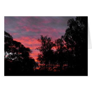 Ironbark Sunset Card
