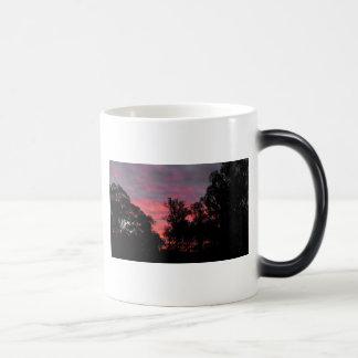 Ironbark Sunset Magic Mug