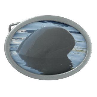 Irrawaddy Dolphin Peek-A-Boo Belt Buckle