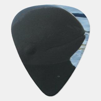 Irrawaddy Dolphin Peek-A-Boo Pick