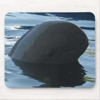 Irrawaddy Dolphin Peek-A-Boo Mouse Mat