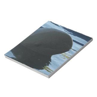 Irrawaddy Dolphin Peek-A-Boo Notepad