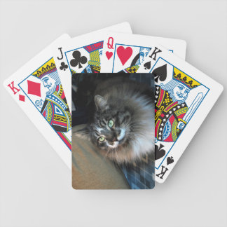 Irresistible Cat Bicycle Playing Cards