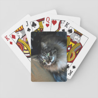 Irresistible Cat Playing Cards