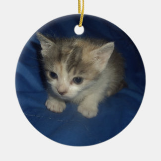 Irresistible Kitty Christmas Ornament