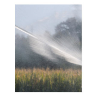 irrigation fields postcard
