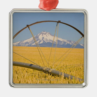 Irrigation Pipe in Field Christmas Ornament