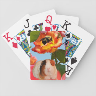 Is he gone yet? Guinea pig hiding from bee on rose Bicycle Playing Cards