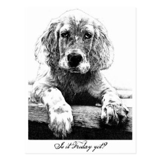 Is it Friday yet? Postcard