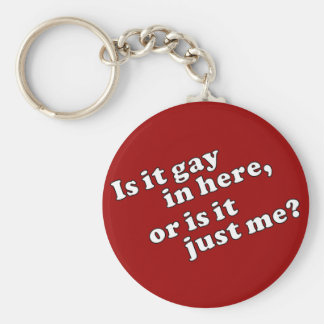 Is it gay in here, or is it just me? key ring