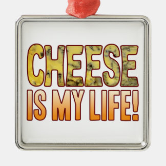 Is My Life Blue Cheese Silver-Colored Square Decoration