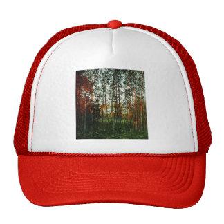 Isaac Levitan- The last rays of sun. Aspen forest. Trucker Hats