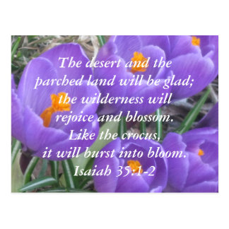 Isaiah 35:1-2 ~ The Crocus Postcard