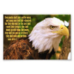 Isaiah 40:30-31 with Bald Eagle Photograph
