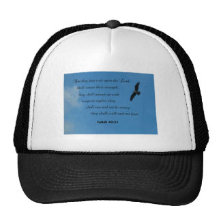 Isaiah 40:31 But they that wait upon the Lord... Hat