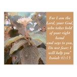 Isaiah 41:13 post card