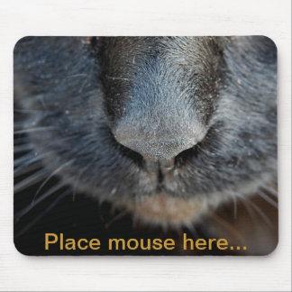 Isis Mousepad