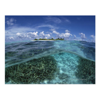 Island 2 postcard