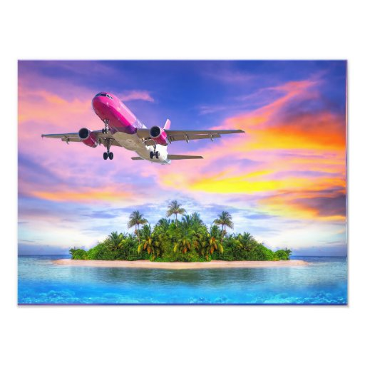 island flight art photo