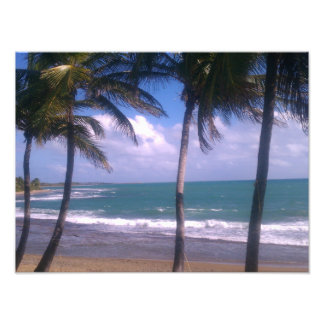 Island Getaway Photo Print