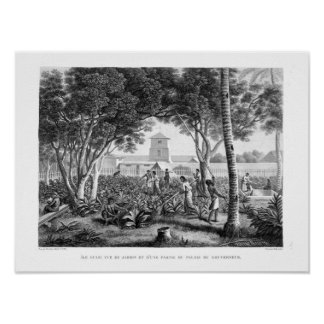 Island of Guam: Natives at Work in the Garden of t Poster