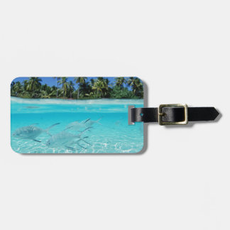 Island Paradise Bag Tag