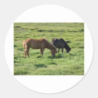 Islandpferde Round Sticker
