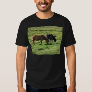 Islandpferde T Shirts