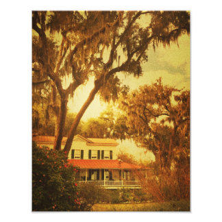 Isle Of Hope Mansion Photo