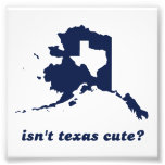 Isn't Texas Cute Compared to Alaska Photograph
