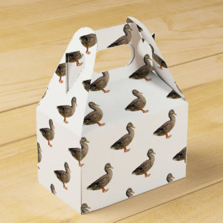 isolated cute duck favour box
