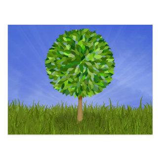 Isolated tree postcard
