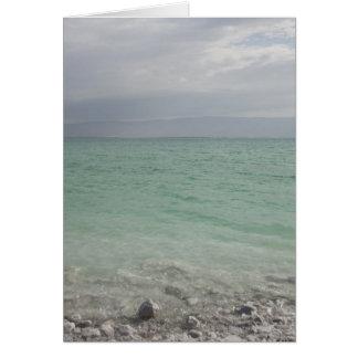 Israel, Dead Sea, seascape Card